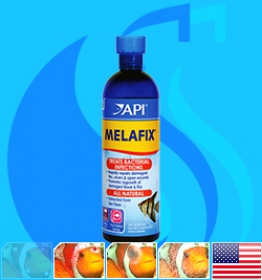API (Treatment) MelaFix  473ml