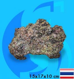 SeaSun DreamMagic (Decoration) Rock ROC-09-CA