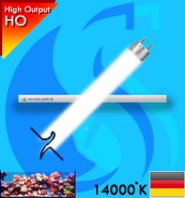 Korallen-Zucht (T5 Bulb) Coral Light New Generation 39w (White 14000k)