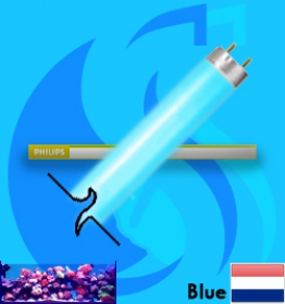 Philips (Fluorescent Bulb) Special Blue TLD (T8 Blue 36w)