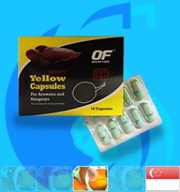 Qian Hu (Treatment) OceanFree Yellow Capsules  10 capsules