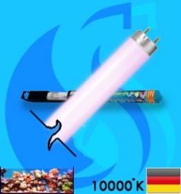 Sylvania (Fluorescent Bulb) Aquastar (T8 10000k 18w)