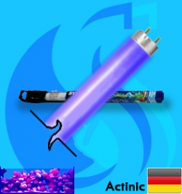 Sylvania (Fluorescent Bulb) Coralstar (T8 Actinic 36w)