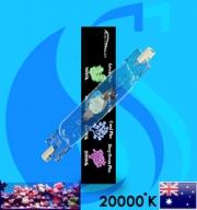 AquaHouse (MH Bulb) MH-DE 150w 20000k