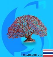 SeaSun DreamMagic (Decoration) Sea Fan Red FAN-06-R