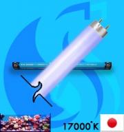Kowa System (Fluorescent Bulb) FL-20SS-DB/18 (T8 17000k 18w)