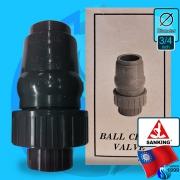 Sanking (Accessory) Ball Check Valve DN20 (3/4 inc)