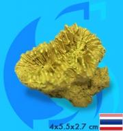 SeaSun DreamMagic (Decoration) Frogspawn Coral Metallic Yellow FRO-03-MY