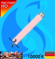 Synvania (T5 Bulb) AquaStar FHO39W 39w (Pink 10000k)