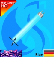 Synvania (T5 Bulb) CoralStar FHO24W 24w (Blue 450nm)