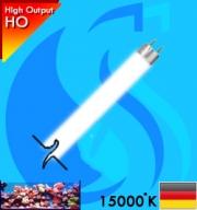 Synvania (T5 Bulb) MarineStar FHO24W 24w (White 15000k)