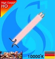 Synvania (T5 Bulb) AquaStar FHO54W 54w (Pink 10000k)