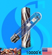 XM (MH Bulb) XSE250/ D 10000k