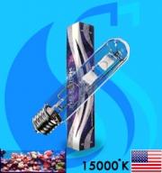 XM (MH Bulb) XSE400/ DB 15000k