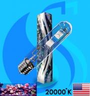 XM (MH Bulb) XSE400/B 20000k