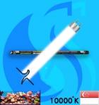Dymax (T5 Bulb) T5NO Tropical DM196 14w (White 10000k)