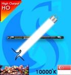 Dymax (T5 Bulb) T5HO Tropical DM209 39w (White 10000k)